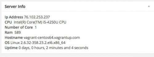 Висновок віджета інформації про сервер в консолі WordPress